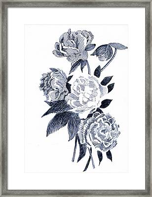 Roses Framed Print by Robbi  Musser