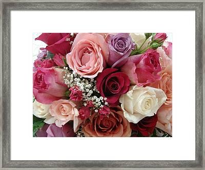 Roses Roses Roses Framed Print