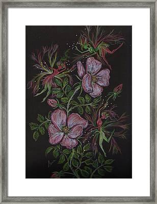 Roses Run Amok Framed Print by Dawn Fairies