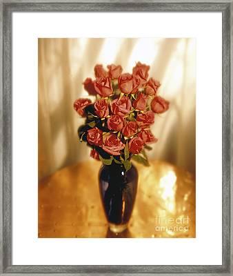 Roses Framed Print by Tony Cordoza