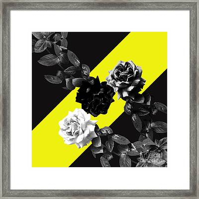 Roses Versus Yellow Framed Print
