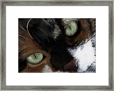 Rosie Framed Print by Mary-Lee Sanders