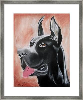 Rosie The Great Dane Framed Print by Arlene  Wright-Correll