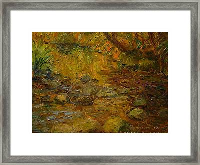 Ross Creek Dunedin Framed Print