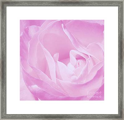 Rosy Cheek Pink Framed Print by Janice Westerberg