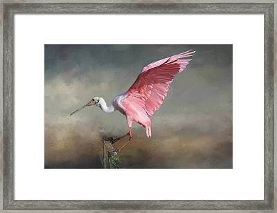 Framed Print featuring the photograph Rosy by Donna Kennedy