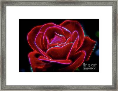 Rosy Dream Framed Print