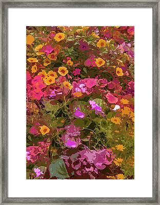 Rosy Garden Framed Print