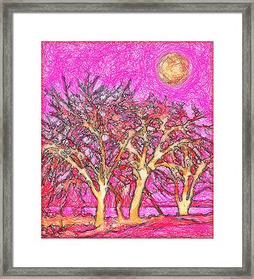 Framed Print featuring the digital art Rosy Hued Trees - Boulder County Colorado by Joel Bruce Wallach