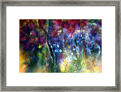 Rosy Paintbrush Framed Print by Don  Wright