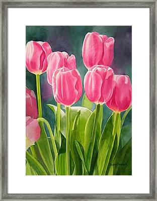 Rosy Pink Tulips Framed Print