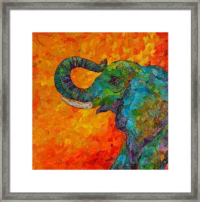 Rosy The Elephant Framed Print