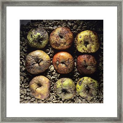 Rotten Apples Framed Print by Bernard Jaubert