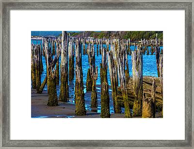 Rottening Pier Posts Framed Print by Garry Gay