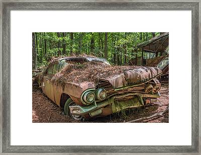 Rotting Classic In Color Framed Print