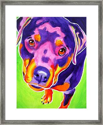 Rottweiler - Summer Puppy Love Framed Print by Alicia VanNoy Call