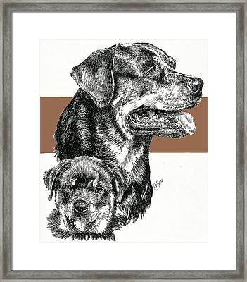Rottweiler Father And Son Framed Print by Barbara Keith