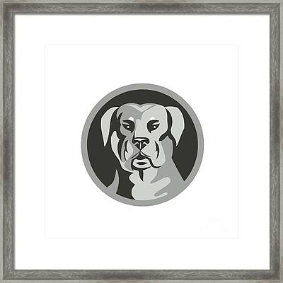 Rottweiler Guard Dog Head Circle Black And White Framed Print by Aloysius Patrimonio