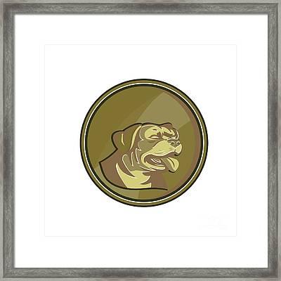 Rottweiler Guard Dog Head Gold Medallion Retro Framed Print by Aloysius Patrimonio