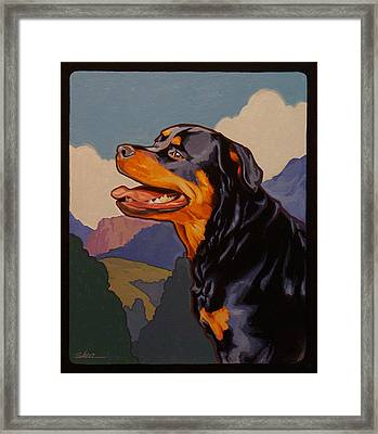 Rottweiler In Rottweil Framed Print by Shawn Shea