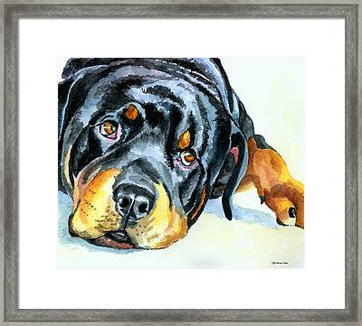 Rottweiler Framed Print by Lyn Cook
