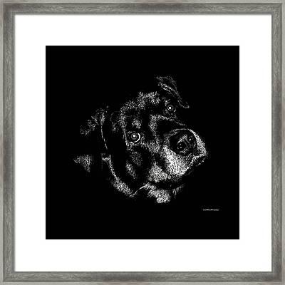Rottweiler Mozart Portrait Framed Print
