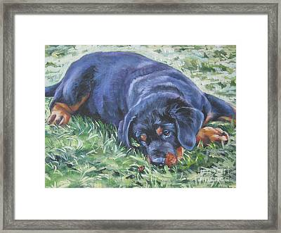 Rottweiler Puppy Framed Print by Lee Ann Shepard
