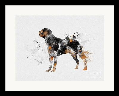 Dog Breed Art Framed Prints