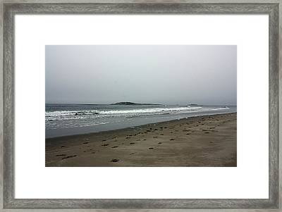 Rough Framed Print