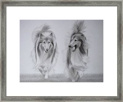 Rough Collie Sisters Framed Print by Karen Wood