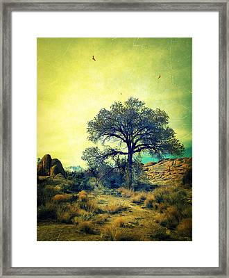Framed Print featuring the photograph Rough Terrain by Glenn McCarthy Art and Photography
