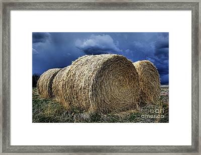 Framed Print featuring the photograph Round Bales by Brad Allen Fine Art