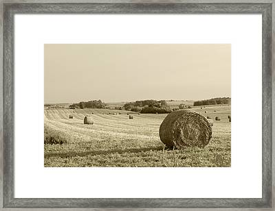 Framed Print featuring the photograph Round Bales by John Hix
