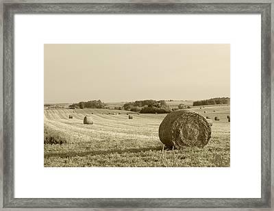 Round Bales Framed Print