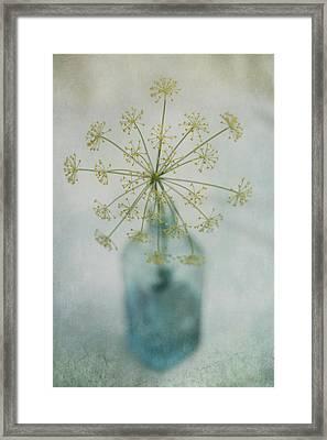 Round Dance Framed Print by Priska Wettstein