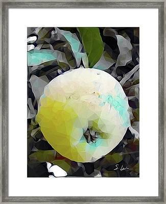 Round Fruit Framed Print