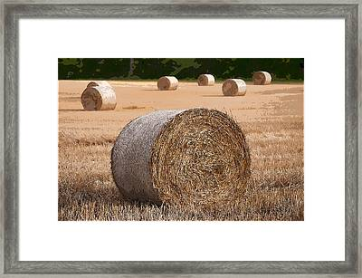 Round Hay Bales In A Swiss Field Framed Print