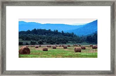 Round Hay Bales, Virginia Framed Print by Thomas R Fletcher
