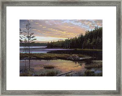 Round Pond Framed Print by Art Chartow