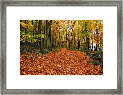Round Valley State Park 6 Framed Print by Raymond Salani III