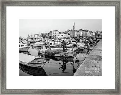 Rovinj Fisherman Working In Old Town Harbor - Rovinj, Istria, Croatia Framed Print
