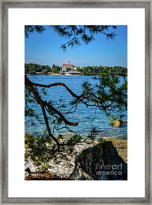 Rovinj Seaside Through The Adriatic Trees, Istria, Croatia Framed Print