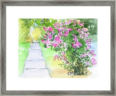 Row Of Crepe Myrtle By Kmcelwaine Framed Print
