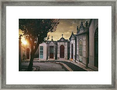 Row Of Crypts Framed Print by Carlos Caetano