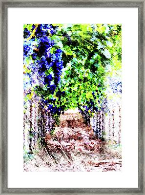Row Of Grapes Framed Print by Andrea Barbieri