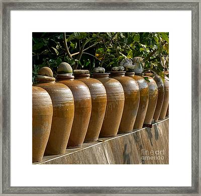 Row Of Pickling Jars Framed Print by Yali Shi