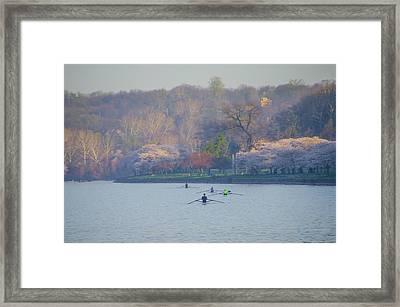 Rowing In Spring - Philadelphia Framed Print