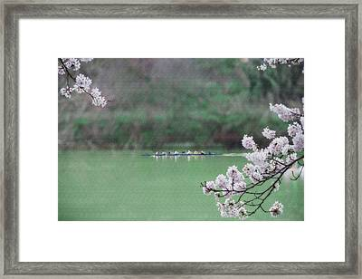 Rowing On The Mon Framed Print by Dan Friend