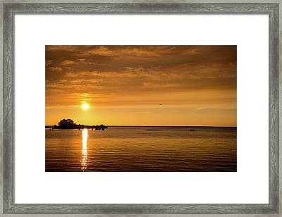Framed Print featuring the photograph Rowingteam by Onyonet  Photo Studios