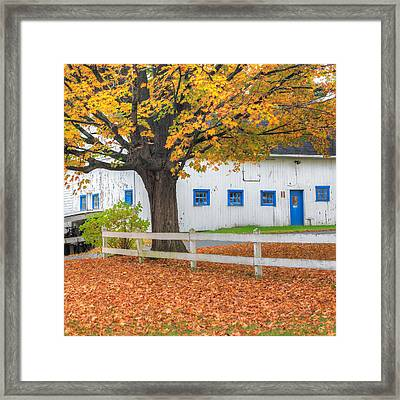 Roxbury Connecticut Barn Square Framed Print by Bill Wakeley